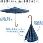 逆転の発想が生み出した、ちょっと便利なおもしろ傘☆「Carry saKASA(キャリーサカサ)」