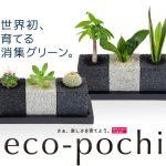 かわいらしいプチ植物ポットでお部屋の空気も綺麗にしよう☆おしゃれな育てるインテリア消臭グリーン「エコポチ」