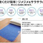 ベッドパッドや敷布団の下に敷くだけ☆ 防カビ消臭効果のある除湿シート「からっと寝」