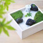 ちょっと雅な箱庭クラフト☆ 苔を育てて素敵な小庭を育める「こけ庭キット」
