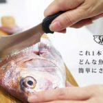 誰でも簡単に魚をさばけるがコンセプト☆ クラウドファンディングでも人気を集めた「サカナイフ プロジェクト」