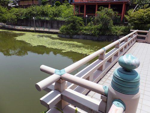 天王寺公園2