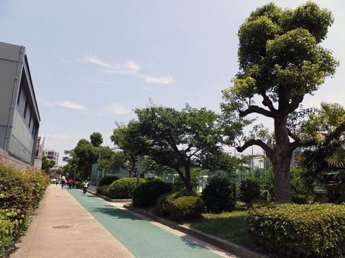 真田山公園3