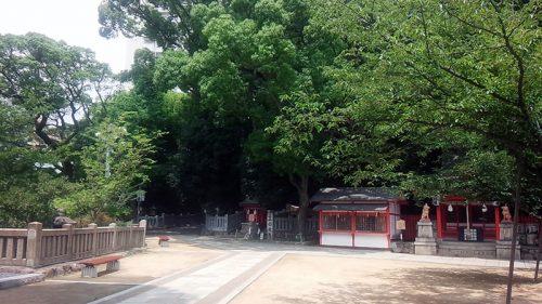 生田の森1