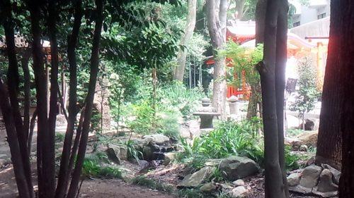 生田の森5